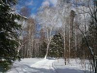 Фото Владимира Капитонова (Ижевск)